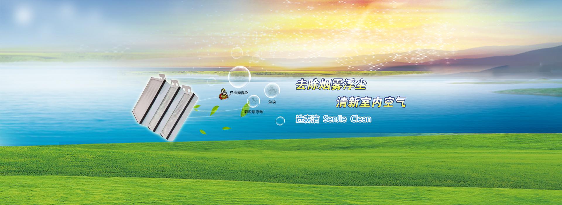 深圳市森洁净化科技有限公司